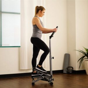 Exercise Stepper machines of 2021   Sunny Health & Fitness Twist Stepper Step Machine with Handle Bar and LCD Monitor 2021- No. 059